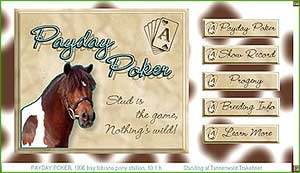 Payday Poker, a stallion site in html featuring a video clip and a contact form script